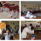 Collaborative Learning di SD Sriharjo